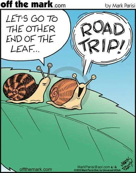 Funny Jokes Road Trips