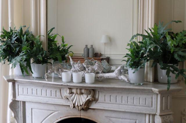 Wij hebben de ruimte en tuinen voor al uw feesten | Aldeneikerhof | Restaurant - Hotel | Maaseik