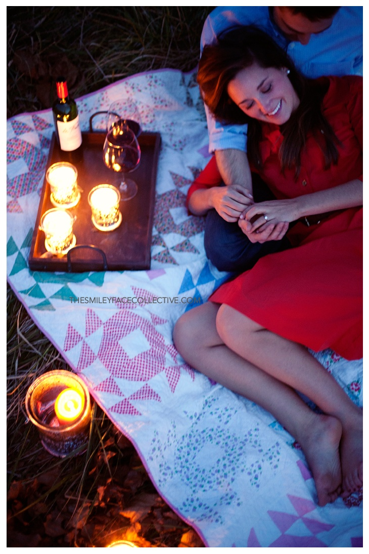 Best 25 Night Picnic Ideas On Pinterest Surprise Date