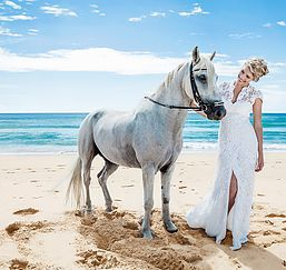 White Horse, Beach Wedding