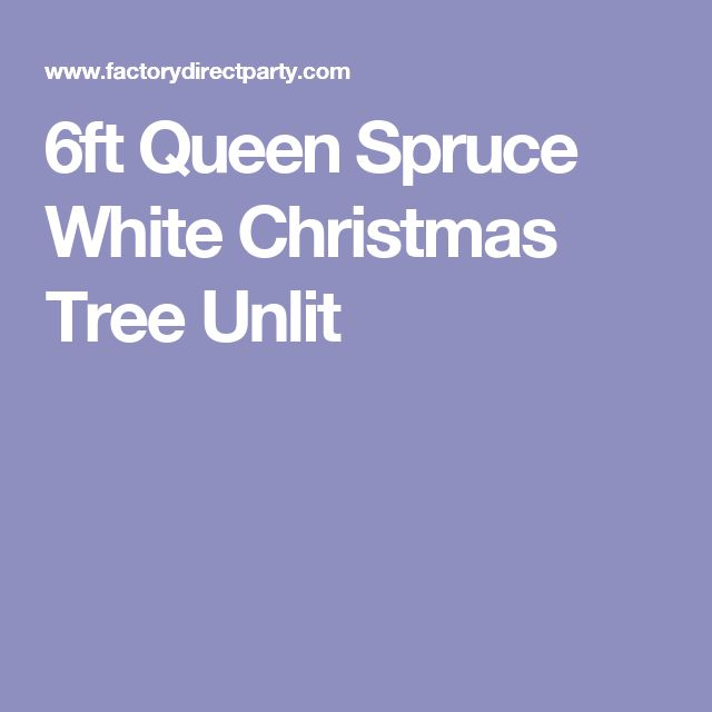 6ft Queen Spruce White Christmas Tree Unlit