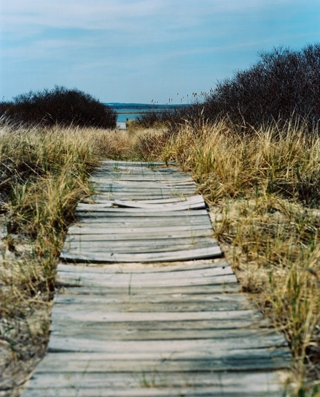 Boardwalk {Lonny, Etsy}