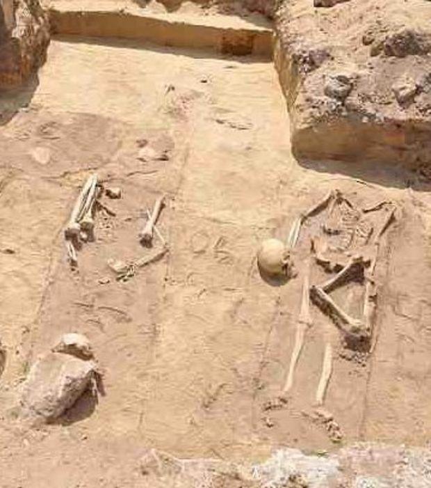 La tombe de potentiels vampires vient d'être découverte par des archéologues près de la ville de Gliwice en Pologne