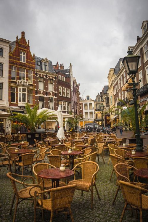 The Hague / Netherlands