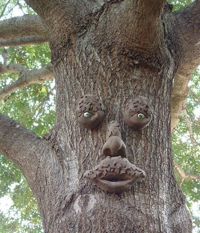 Tree Art Faces Mr Mapleshade Tree Face Garden Art