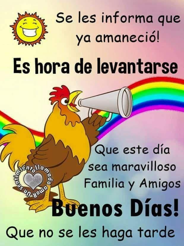 Imagenes De Grinch De Buenos Dias.Pin De Noemi Larrosa En Bbb Postales De Buenos Dias