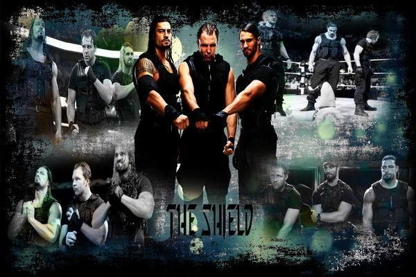 The Shield - Rollins Reigns Ambroser WWE Wrestling Star 50*70cm poster