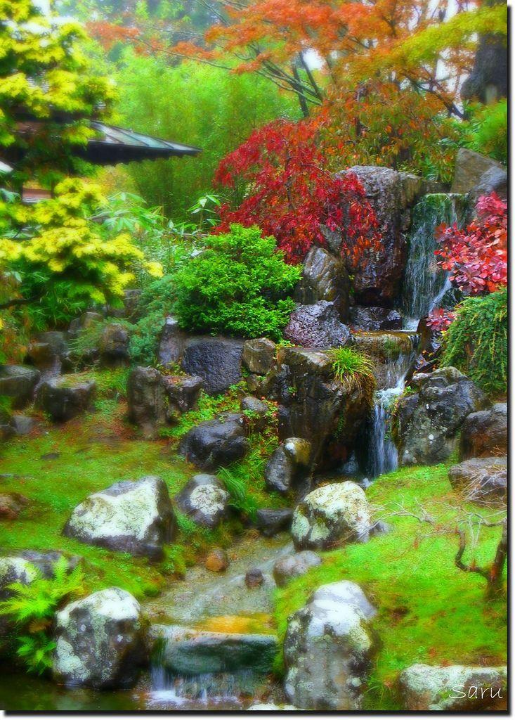 161 Best Images About San Francisco Japanese Tea Garden Oldest Public Japanese Garden In The