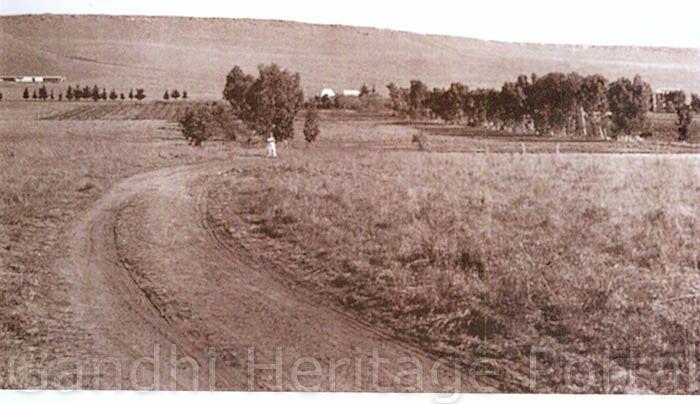 Tolstoy Farm