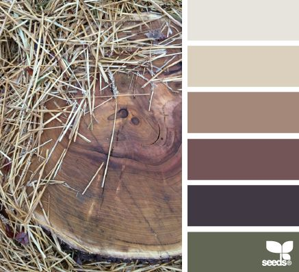 rustic tones - design seeds
