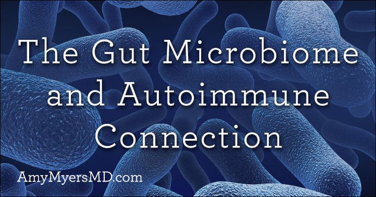 An in-depth look into the connection between your gut microbiome and autoimmune disease.