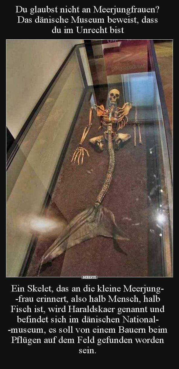 Du Glaubst Nicht An Meerjungfrauen Das Danische Museum