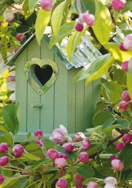 Bird house by R