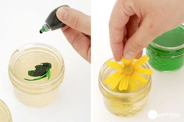 En plus d'être décoratifs, ils parfumeront naturellement votre maison