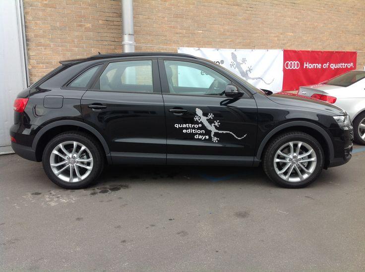 Audi Quattro Edition
