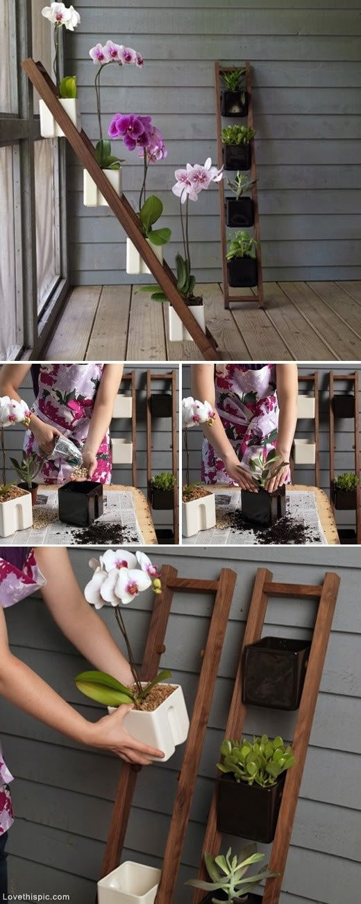 ladder planter garden