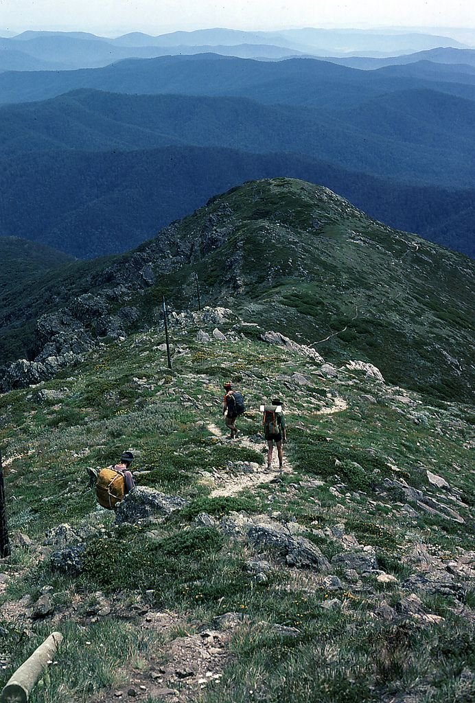 Staircase Spur, Mt Bogong, 1979 (by NettyA) Victoria Australia