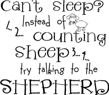 Can't Sleep? Instead Of Couting Sheep Try Talking To The Shepherd wall saying vinyl lettering art decal quote sticker home decal: Home & Kitchen