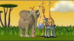 film binatang untuk anak anak - YouTube