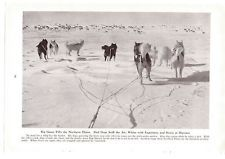 1947 Magazine Page Photo Sled Dogs Caribou Hunting Vintage Photography