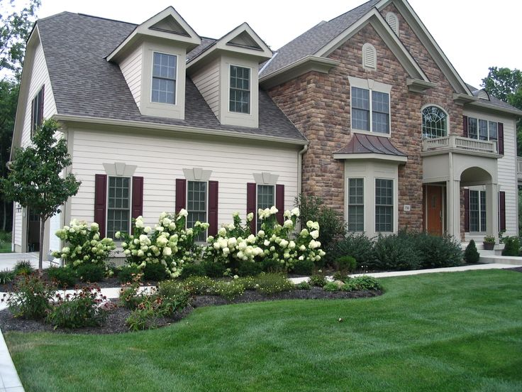 Lime light hydrangea perennial garden lilac front yard for Foundation planting plans