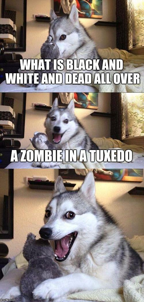 alexa told me about this joke, really wish i would have used this for zombie week. | WHAT IS BLACK AND WHITE AND DEAD ALL OVER A ZOMBIE IN A TUXEDO | image tagged in memes,bad pun dog,funny,zombie,tuxedo,death | made w/ Imgflip meme maker
