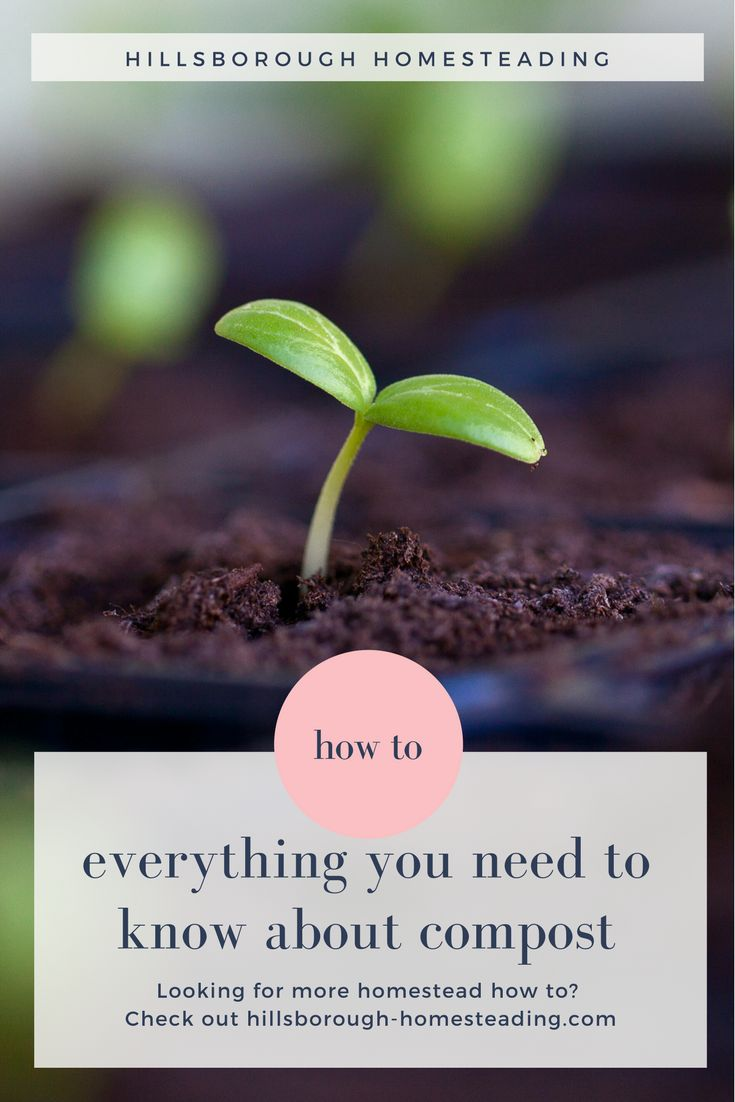 Everything you need to know about compost. How to get started, what you need, and a long list of what you can (and can't!) compost. | Hillsborough Homesteading