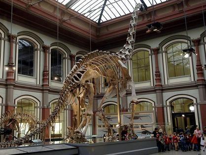 Sauriersaal des Naturkundemuseums