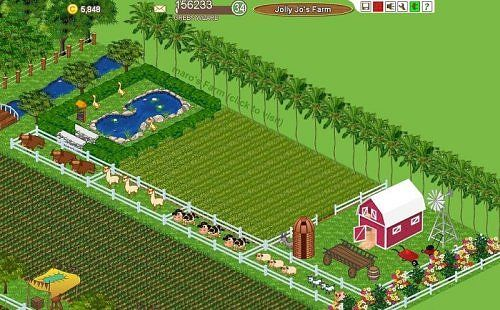 Planning Your Homestead's Layout | Backyard Farm ...