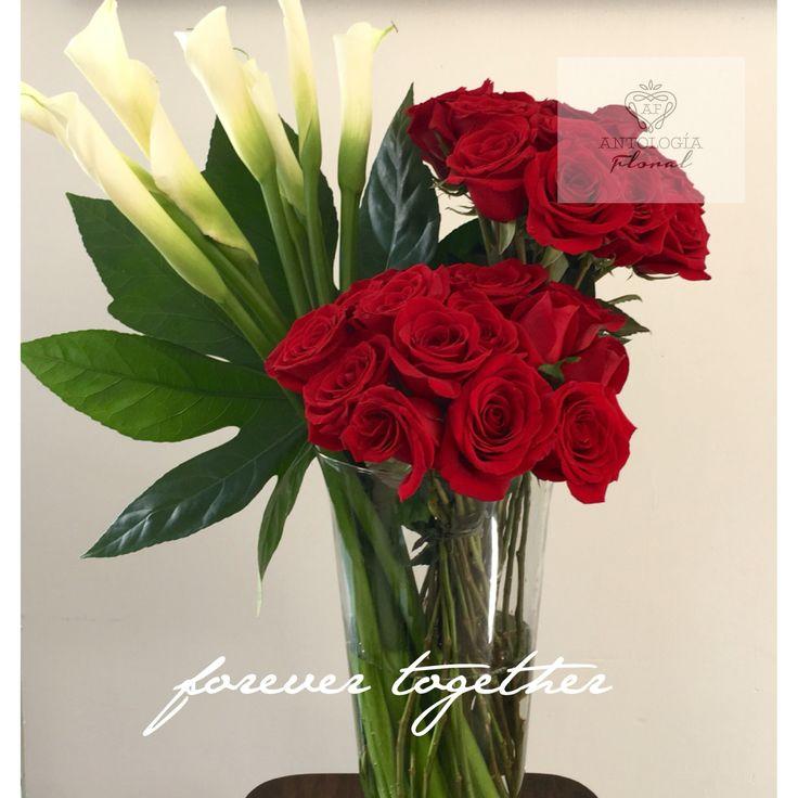 Rosas rojas y alcatraz