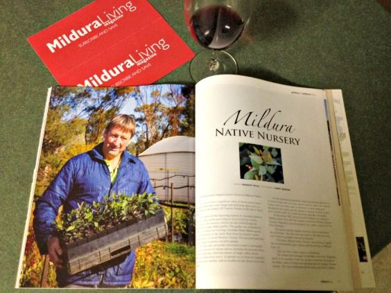Mildura Living Magazine Spring Edition - Tony Langdon, an incredibly humble and unassuming man was featured in the Gardens section as he owns the Mildura Native Nursery. Many years ago we bought established trees from his nursery and were so impressed with his knowledge of plants and what would work best in the region of Mildura. It's a lovely place just to visit as it's like being in the bush.