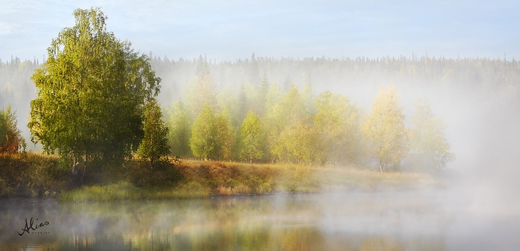 Shades of green, landscape photograph from Karhunkierros, Finland