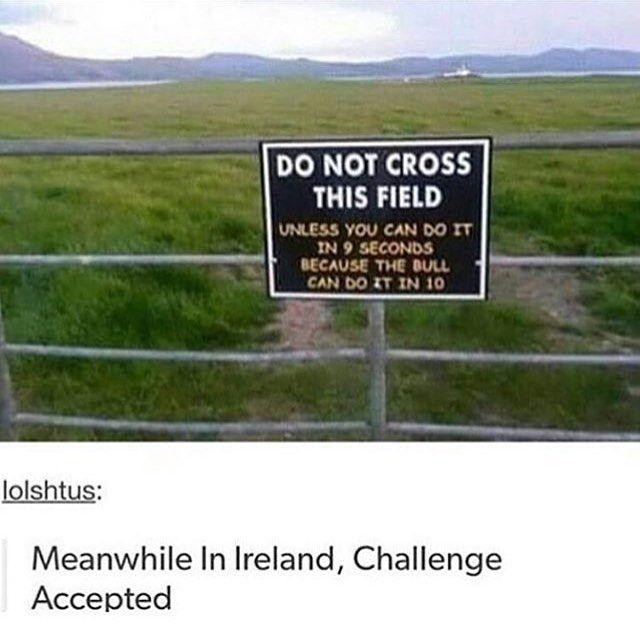 I'd do it if I could run lol