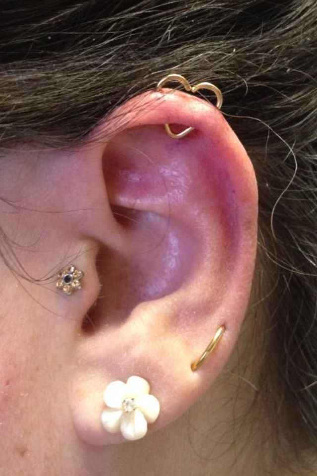 New orbital Heart piercing next to old tragus and orbital lobe