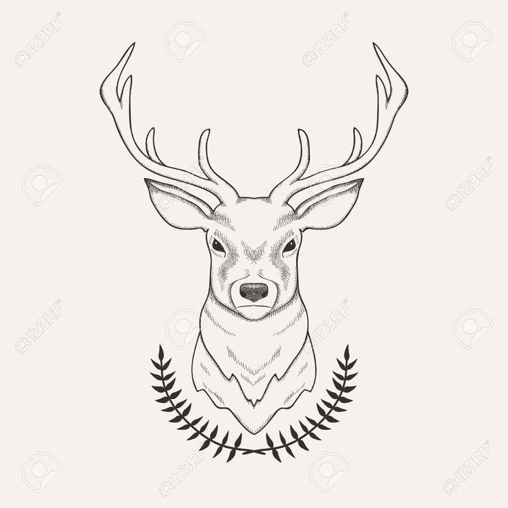Image result for deer drawing