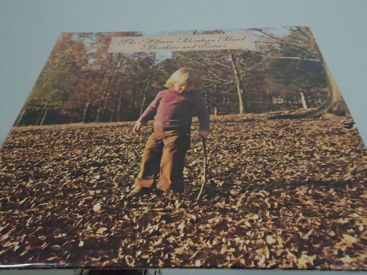 lp - the allman brothers band - brothers and sisters -