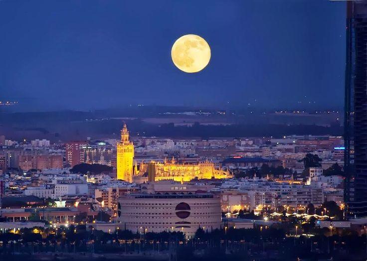 http://apartmentsevilleflornaranja.blogspot.com.es/