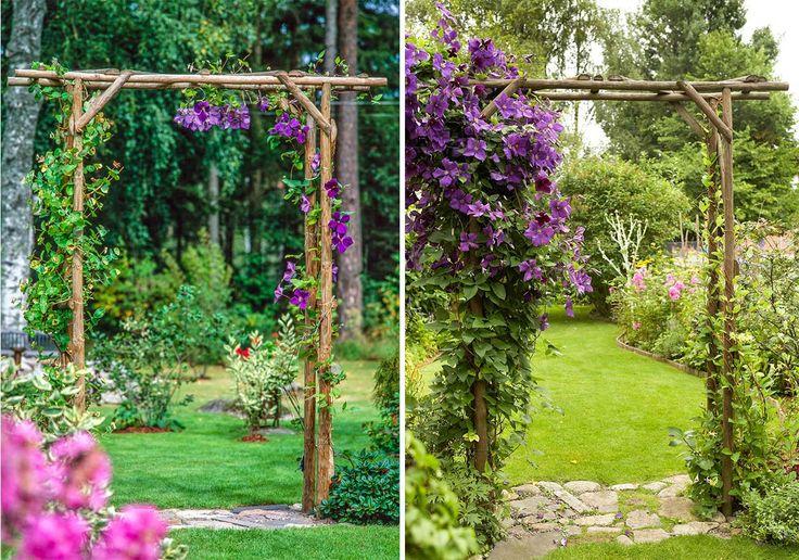 Guide: Så bygger du en blomstrande pergolaportal | LAND.se