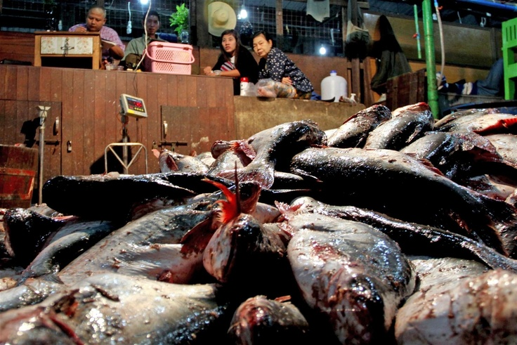 Fishmongers await the next fish delivery of fish at a port north of Yangon