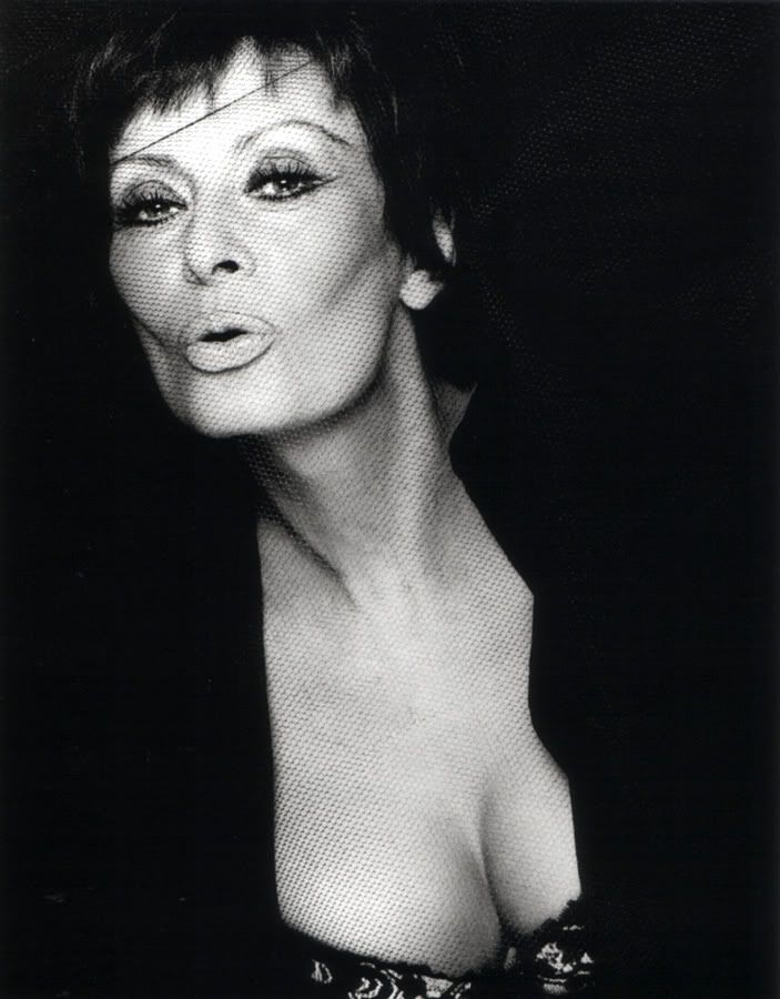 Sophia Loren - by Greg Norman