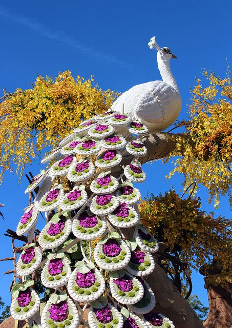 'Bird in Flower' - Annual Tournament of Roses Parade, Pasadena, California