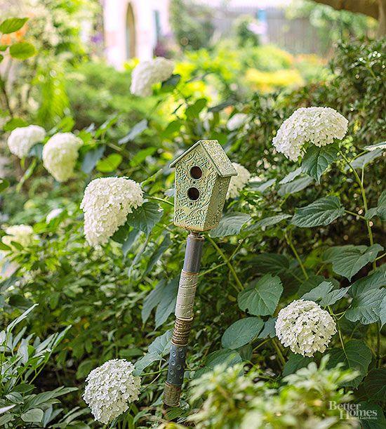 die besten 25 incrediball hydrangea ideen auf pinterest annabelle hortensie hortensien. Black Bedroom Furniture Sets. Home Design Ideas