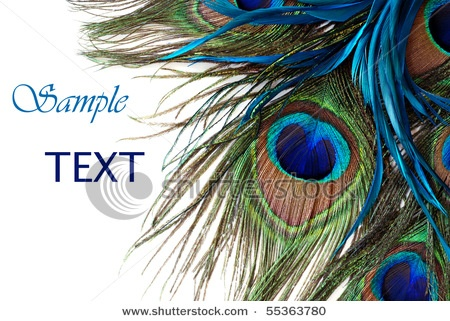 Peacock feather invitation template - photo#15