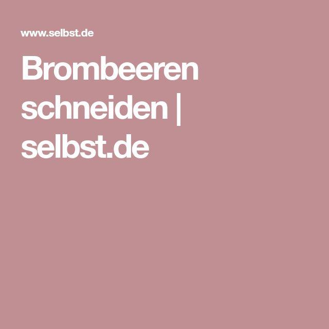 Brombeeren schneiden | selbst.de