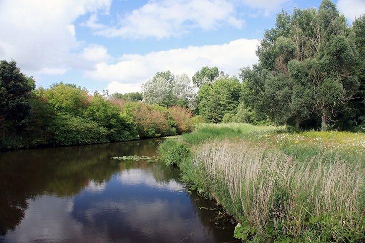 Westerpark, het grootste park van Zoetermeer.