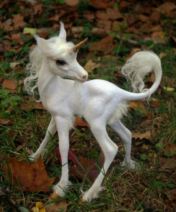 Baby Unicorn, real to some lol
