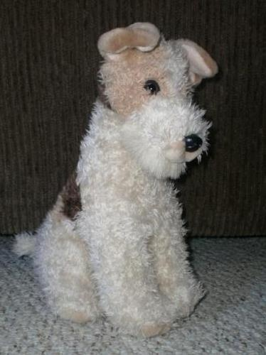 Define wire fox terrier – Dogs our friends photo blog