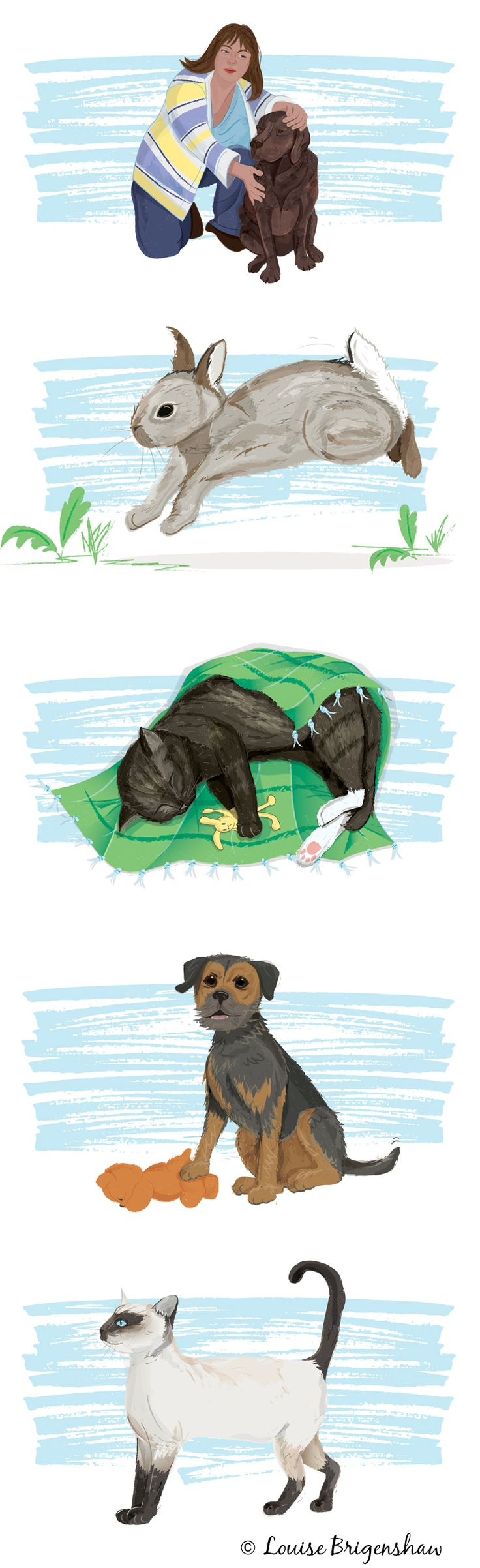 Pet illustrations by Louise Brigenshaw for Pet Plan UK's customer newsletters.