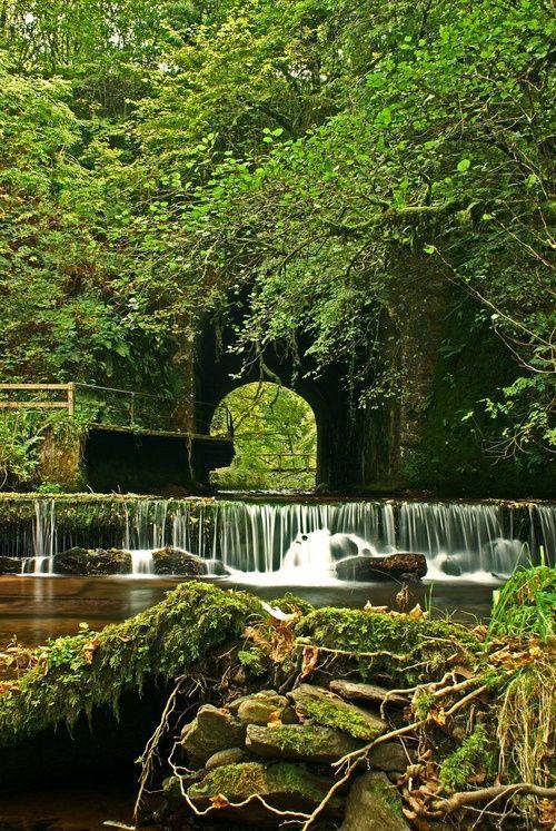 Waterfall Park, Glenshelane, Ireland  photo via koichiro