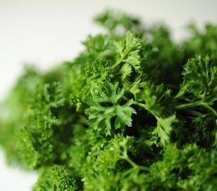 Five health benefits of parsley and a detoxifying shake